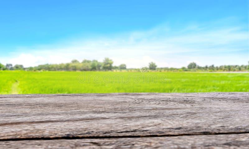 Tavola di legno d'annata con il fondo verde del giacimento del riso fotografie stock