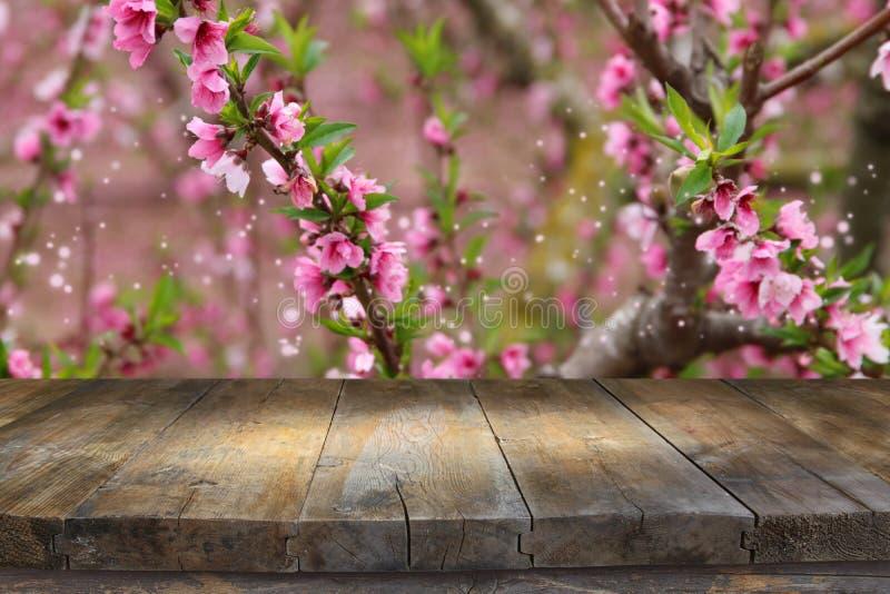 tavola di legno davanti al paesaggio dell'albero del fiore della molla Esposizione e presentazione del prodotto fotografia stock