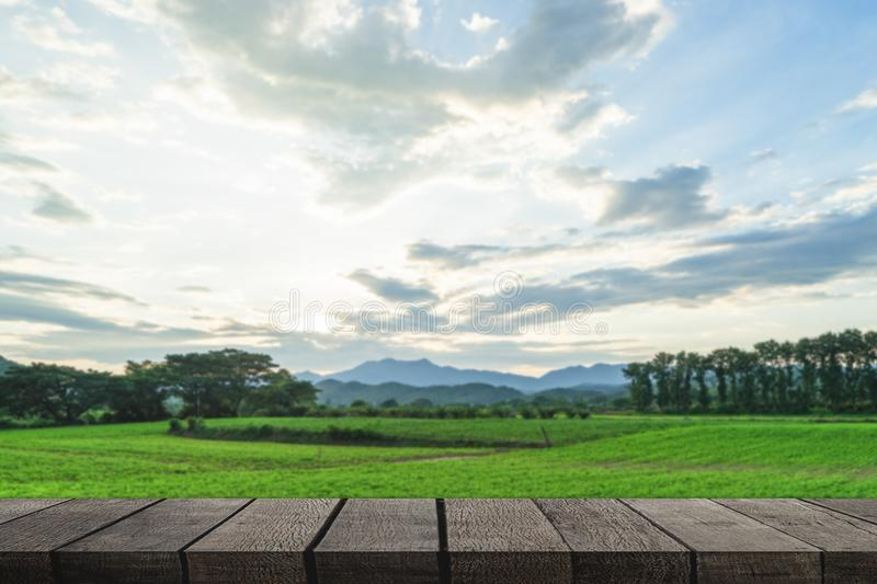 Tavola di legno vuota in bianco sul Mountain View immagine stock