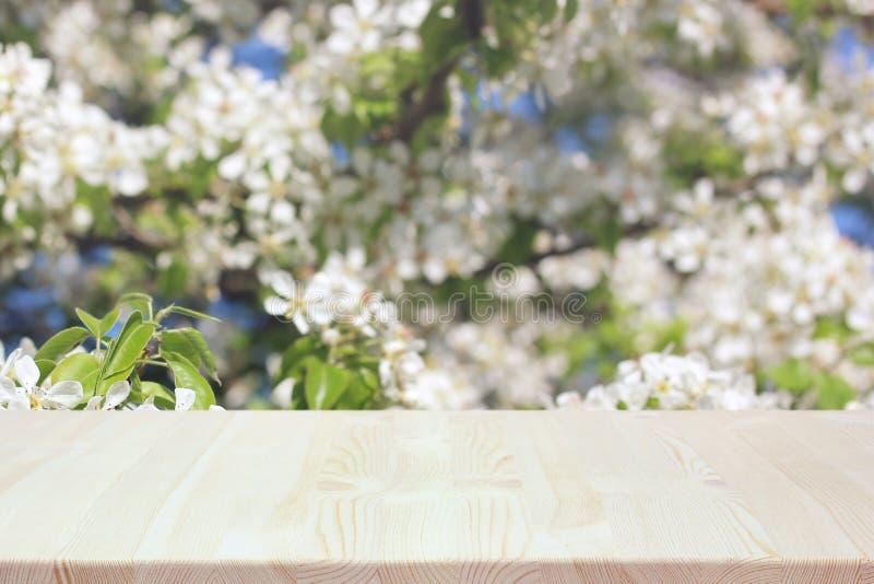 Tavola di legno vuota su un fondo vago molla con i rami di fioritura di Apple fotografie stock libere da diritti