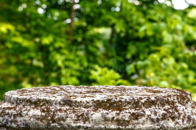 Tavola di pietra in bianco con il parco vago della città su fondo, sfondo naturale fotografia stock libera da diritti