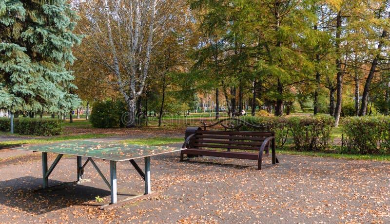 Tavola di Tenis e un banco con le foglie cadute su loro in autunno caldo nel parco fotografia stock