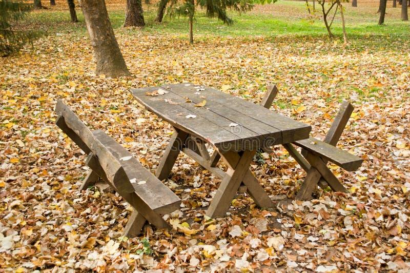 Tavola e banco di picnic di legno nella foresta di autunno fotografia stock libera da diritti