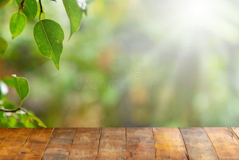 Tavola vuota del bordo di legno davanti a sfondo naturale vago Vecchio legno di prospettiva sopra sfuocatura in naturale immagine stock libera da diritti