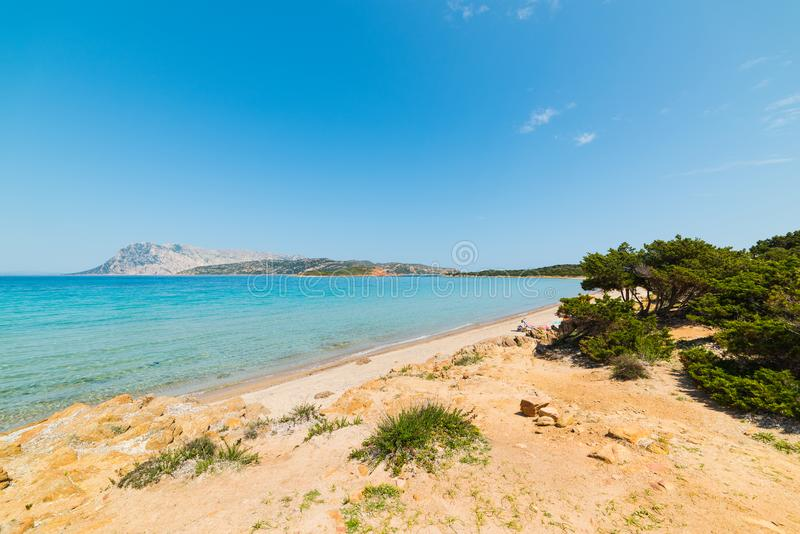 Tavolara、Molara和Molarotto海岛 免版税库存照片