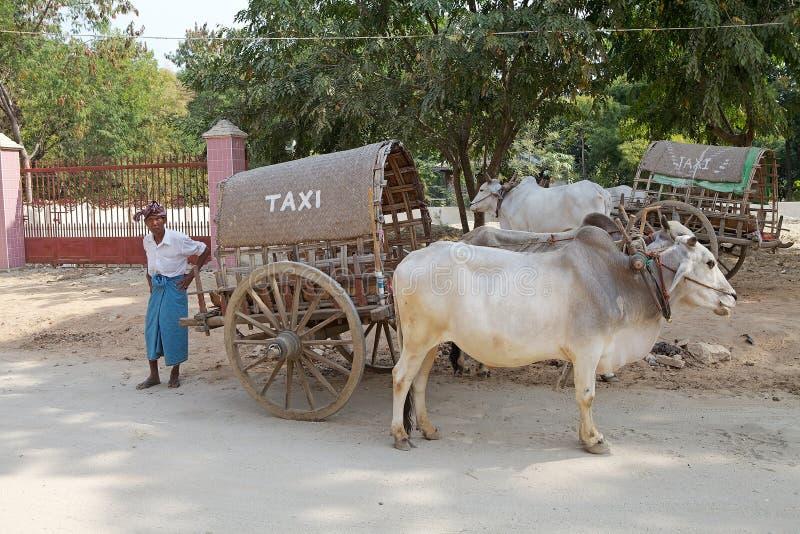 Taxi Myanmar. Traditional burmese carriage taxi along the street at Mingun, Myanmar stock image