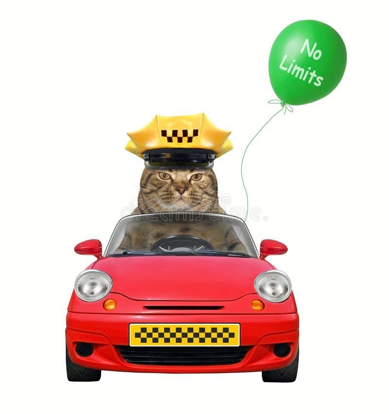 Taxista del gato en coche imagen de archivo