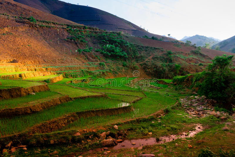 TaXua, Sonla, Vietnam photographie stock