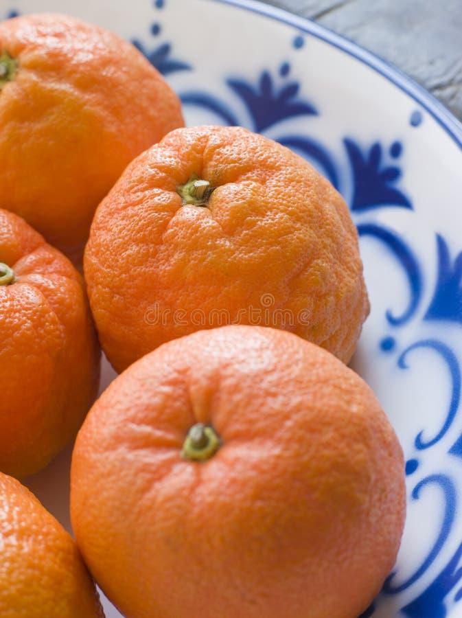 Tazón de fuente de las naranjas de Sevilla fotografía de archivo