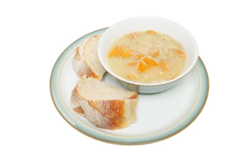 Tazón de fuente de sopa fotografía de archivo
