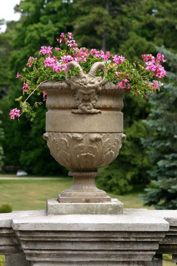 Tazón de fuente malvado con las flores fotos de archivo