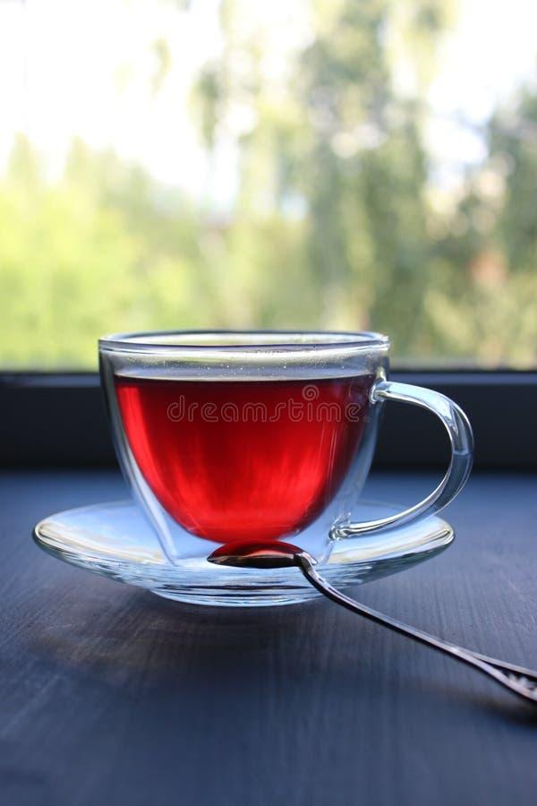 Taza aislada de té en taza de cristal transparente en el alféizar foto de archivo