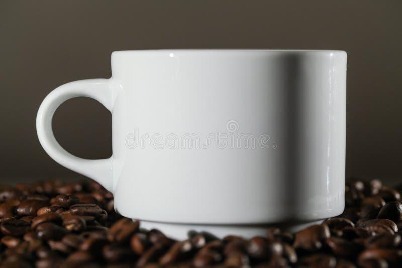 Taza blanca en granos de café fotografía de archivo