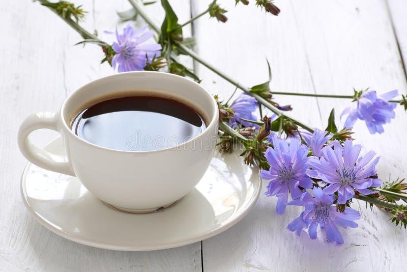Taza de bebida de la achicoria del té del café con la flor de la achicoria fotografía de archivo libre de regalías