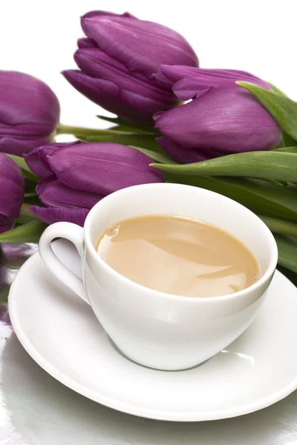 Taza de café blanca foto de archivo libre de regalías