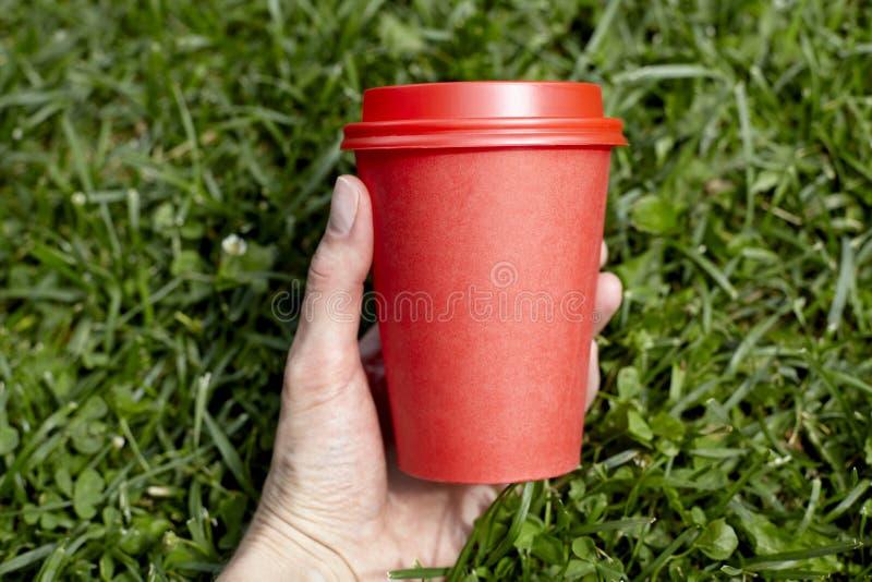 Taza de café de papel roja al takeaway en césped de la hierba verde en mano de la mujer Mañana del desayuno fuera del café fotografía de archivo