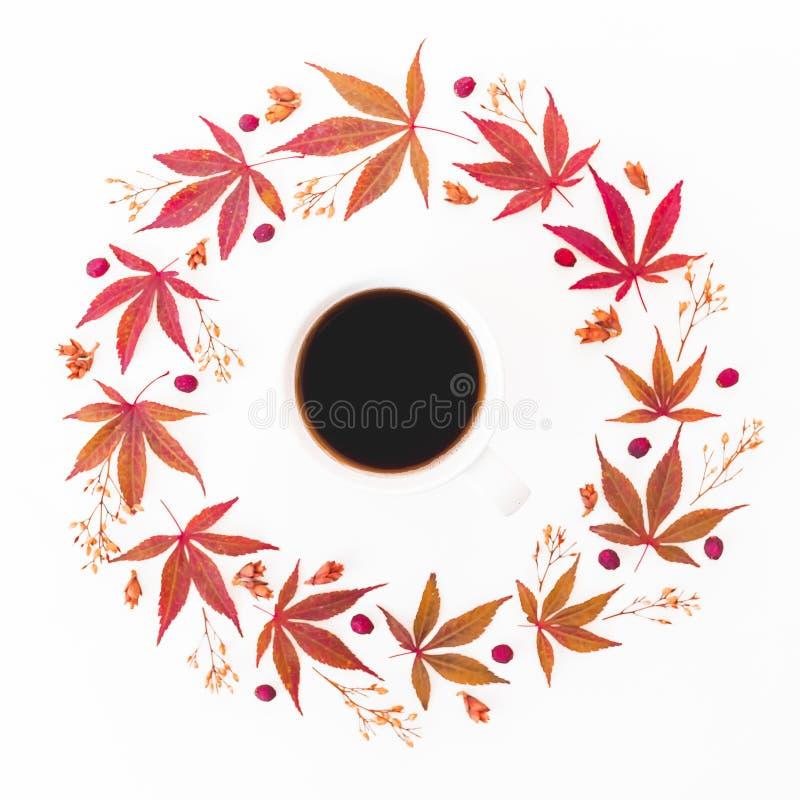 Taza de café sólo con el marco redondo hecho de las hojas de otoño y de las flores secadas en el fondo blanco Endecha plana, visi fotografía de archivo libre de regalías