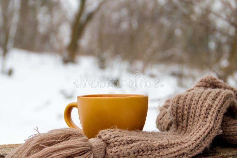 Taza de café y de bufanda hecha punto acogedora en el fondo del bosque del invierno imagenes de archivo
