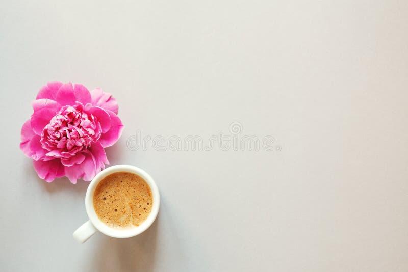 Taza de café y de flor hermosa fresca de la peonía del rosa de la primavera en el fondo ligero, visión superior, disposición plan imagenes de archivo