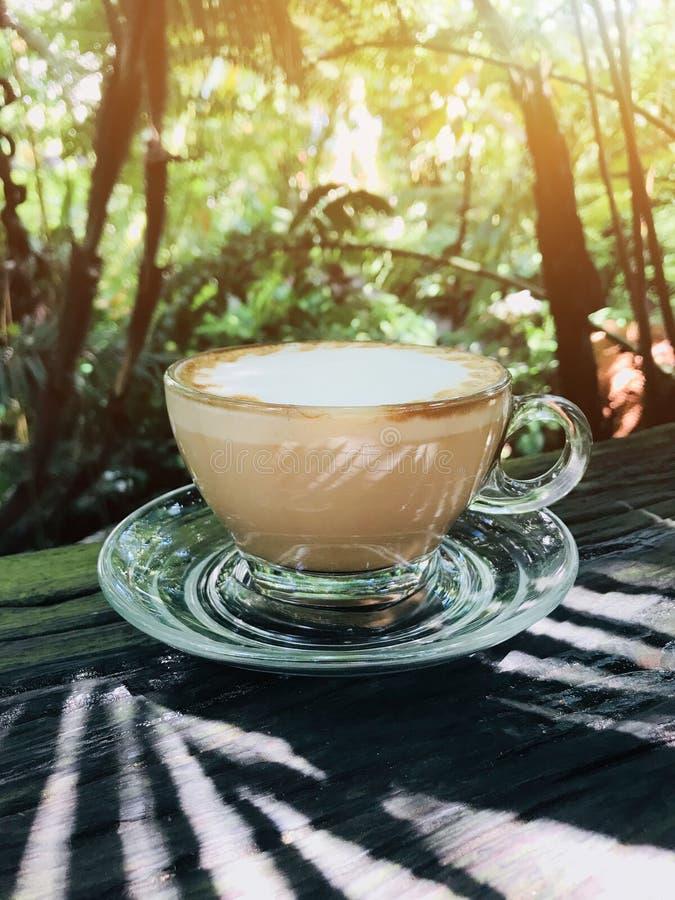Taza de caf? caliente para la bebida de la ma?ana fotos de archivo libres de regalías