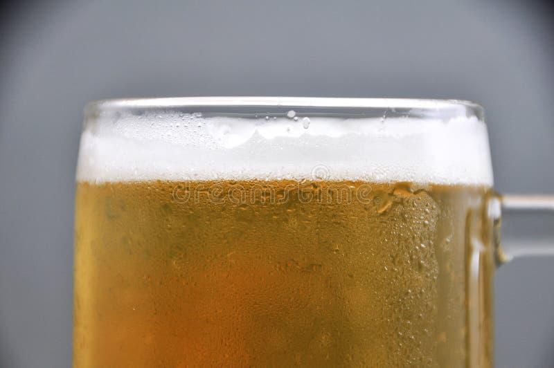 Taza de cerveza en el fondo blanco fotografía de archivo libre de regalías