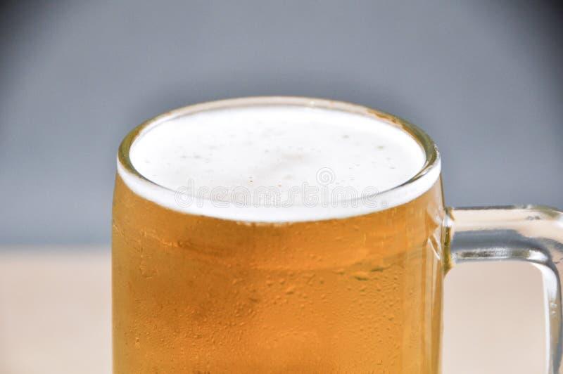 Taza de cerveza en el fondo blanco fotos de archivo libres de regalías