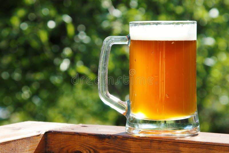 Taza de cerveza fría en día de verano soleado imagen de archivo libre de regalías