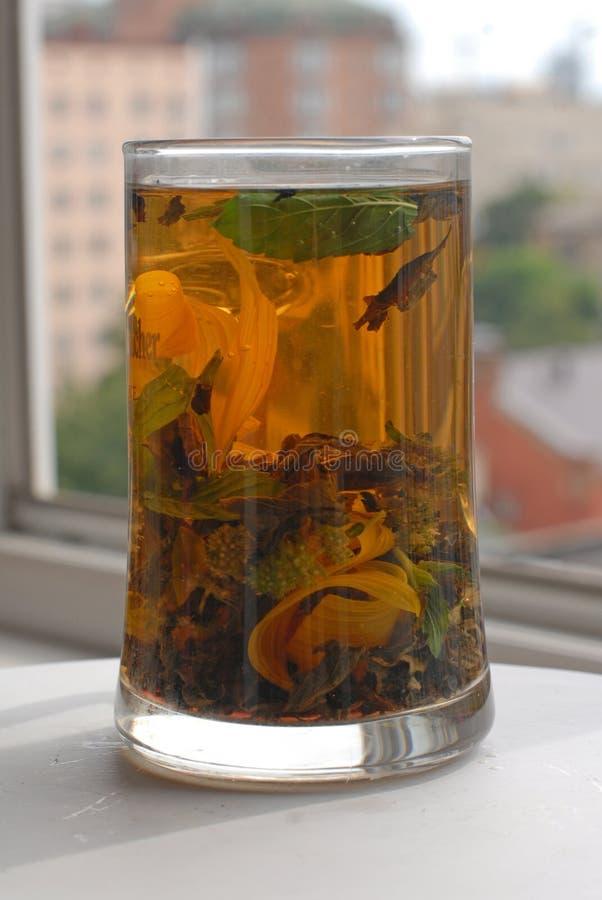 Taza de cristal alta con infusión de hierbas del aroma imagen de archivo