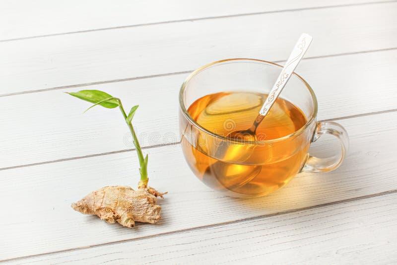 Taza de cristal del té ambarino recientemente preparado, raíz seca del jengibre con el brote verde al lado de él en el escritorio imágenes de archivo libres de regalías