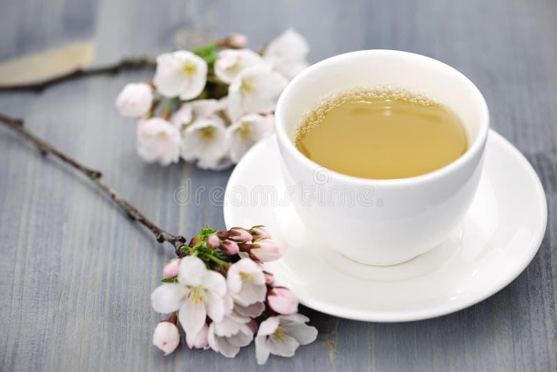 Taza de flor de cerezo del té verde y del japonés imagenes de archivo