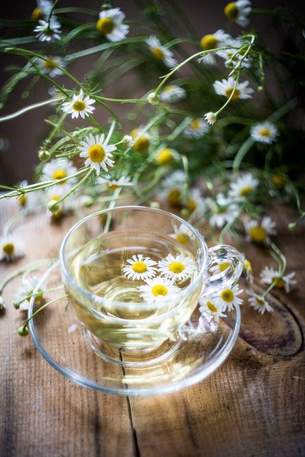 Taza de infusión de hierbas de la manzanilla con las flores en una tabla Bebida natural sana fotografía de archivo libre de regalías