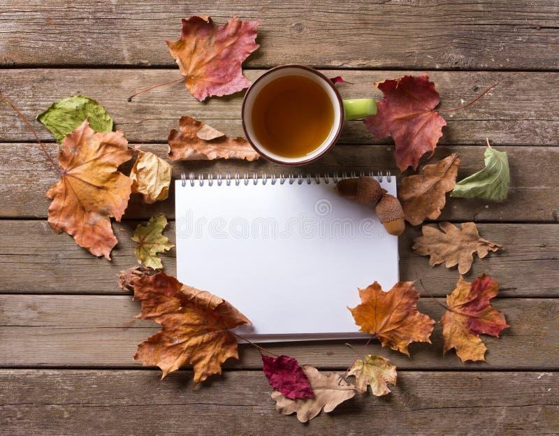 Taza de la libreta de hojas de otoño fotos de archivo