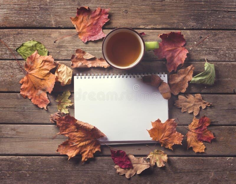 Taza de la libreta de hojas de otoño imagenes de archivo