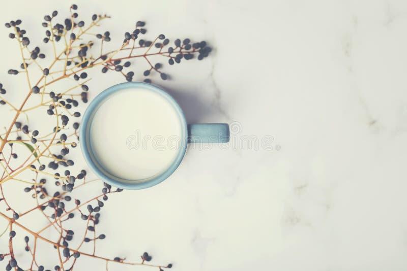 Taza de leche al lado de ramas fotografía de archivo libre de regalías