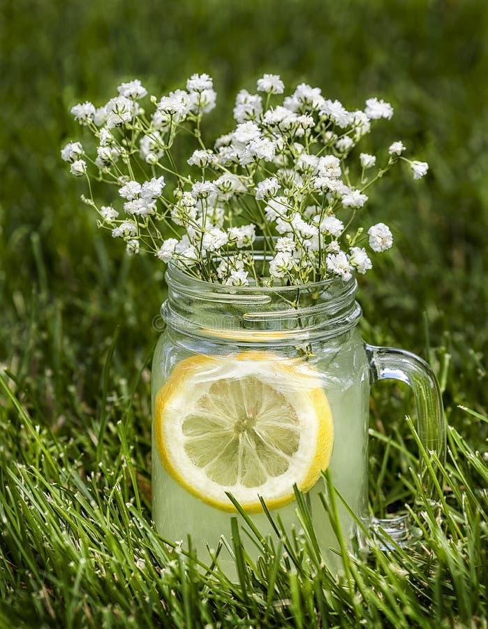 Taza de limonada en la hierba con las flores minúsculas fotografía de archivo