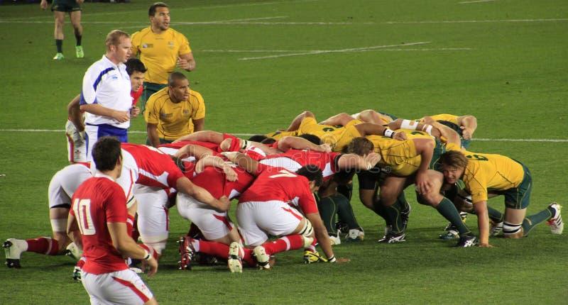 Taza de mundo del rugbi Australia 2011 contra País de Gales fotos de archivo