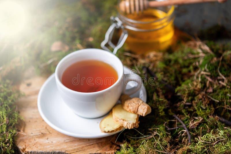 Taza de té con el limón, el jengibre y la miel en la madera y el musgo en el bosque imágenes de archivo libres de regalías
