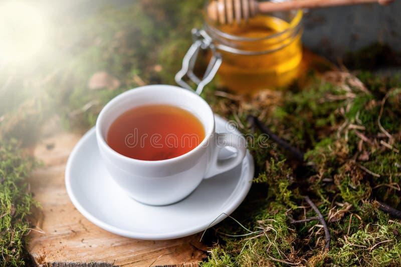 Taza de té con el limón, el jengibre y la miel en la madera y el musgo en el bosque imagenes de archivo