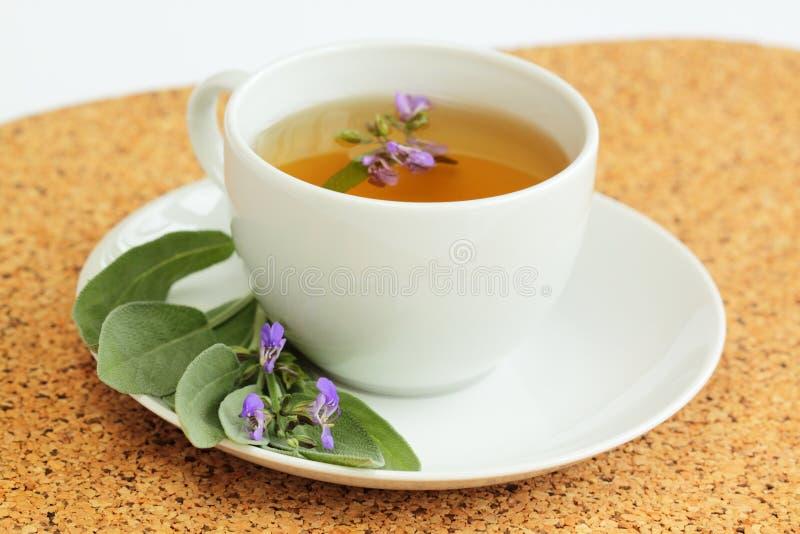 Taza de té con el té sabio herbario /Salvia officinalis/ fotos de archivo