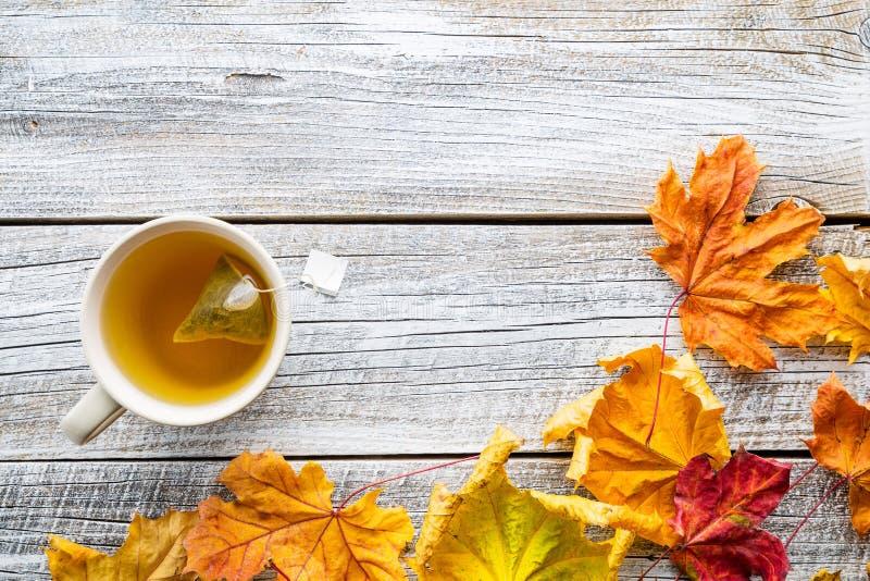 Taza de té con las hojas de otoño fotografía de archivo