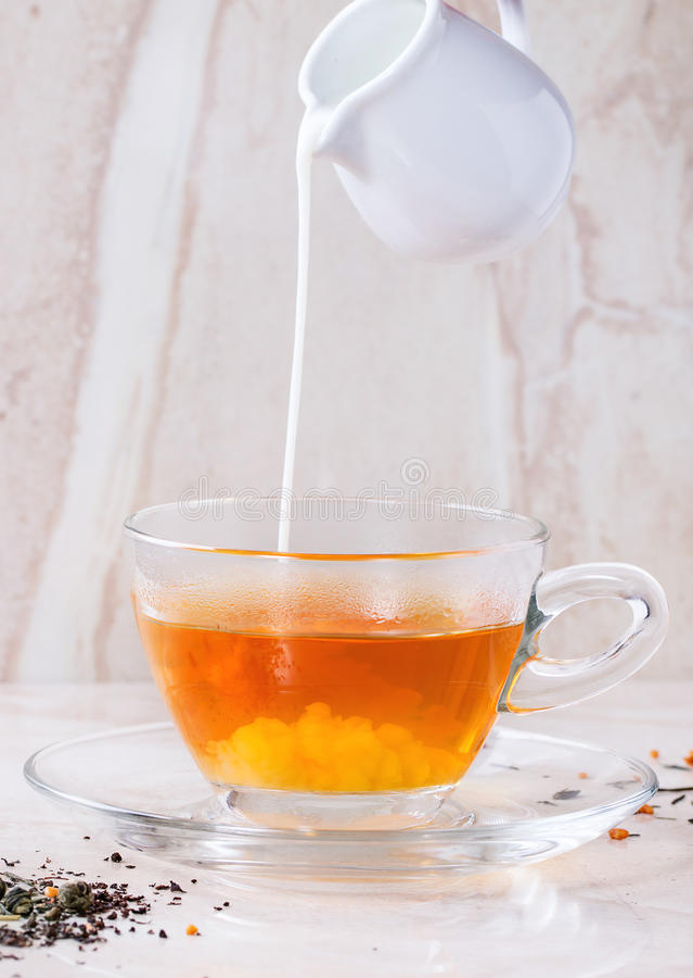 Taza de té con leche caliente imagen de archivo libre de regalías