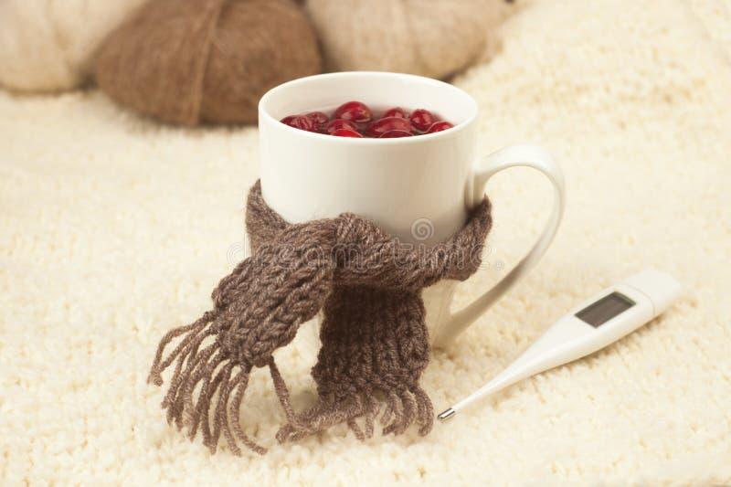 Taza de té con los arándanos, bufanda, termómetro - el concepto de enfermedades respiratorias estacionales, tratamiento de fríos fotografía de archivo
