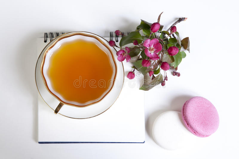 Taza de té con los flores de la manzana y las galletas rosados de los macarrones imagen de archivo libre de regalías