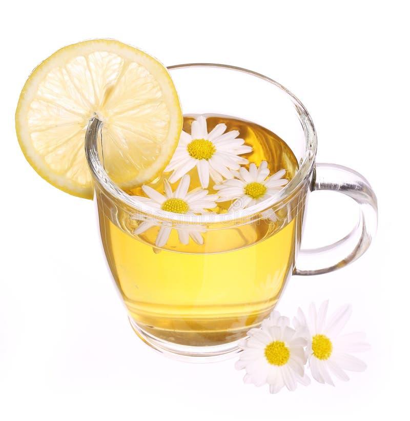Taza de té de manzanilla con las flores y el limón de la manzanilla aislados fotos de archivo