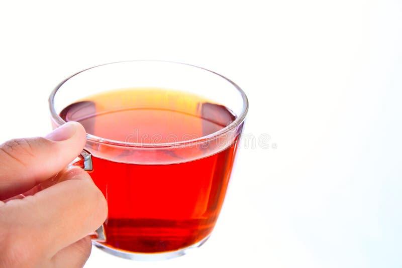 Taza de té a disposición en el fondo blanco fotos de archivo