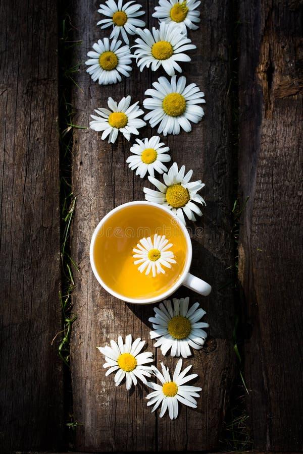 Taza de té de hierbas con flores de manzana fotos de archivo