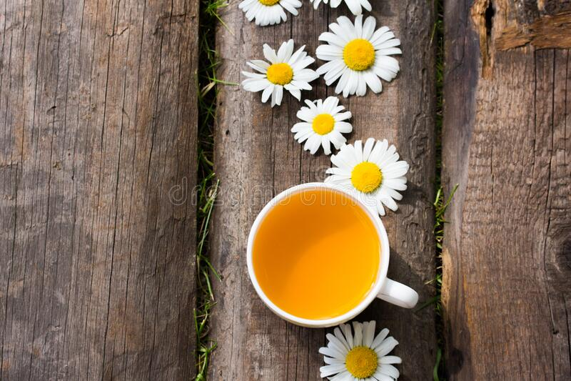 Taza de té de hierbas con flores de manzana imagen de archivo