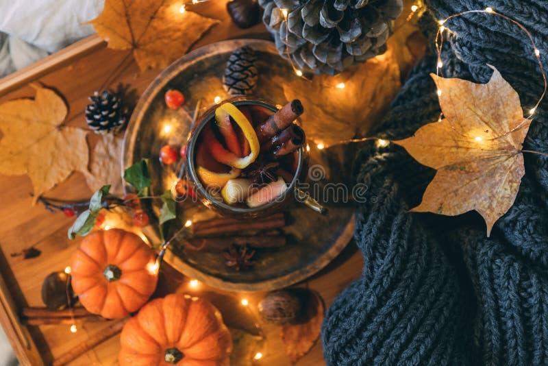 Taza de té picante caliente con anís y canela Composición del otoño foto de archivo libre de regalías