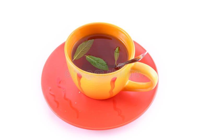 Taza de té verde en el platillo imagen de archivo libre de regalías