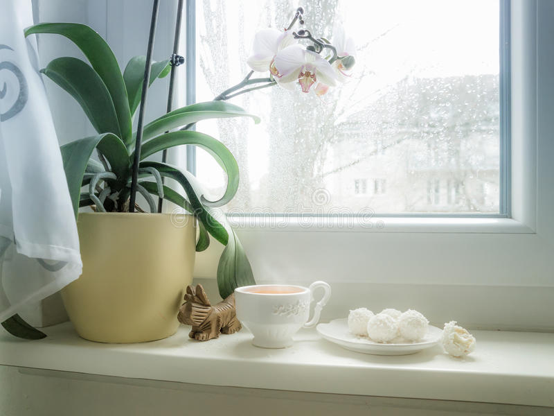 Taza de té y de caramelo fotografía de archivo